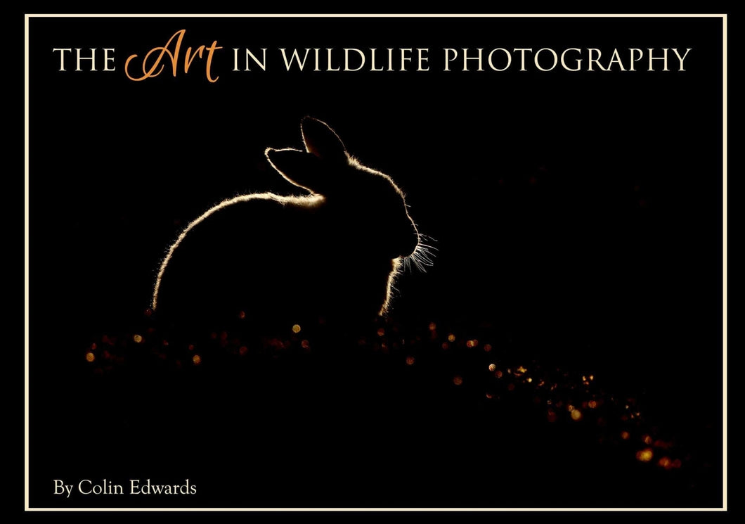 The Art in Wildlife Photography by Colin Edwards