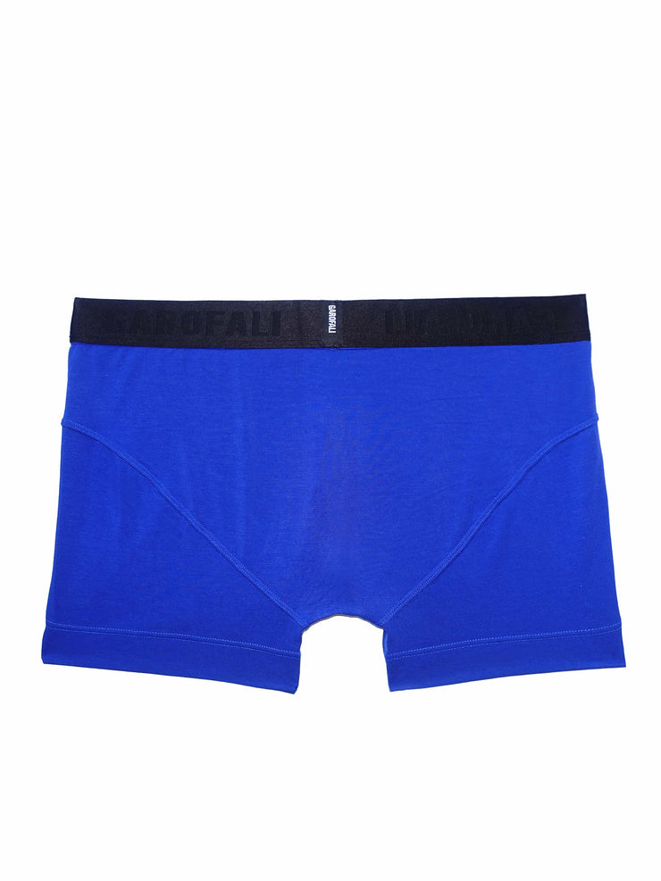 Boxer Brief (Blue/Black)