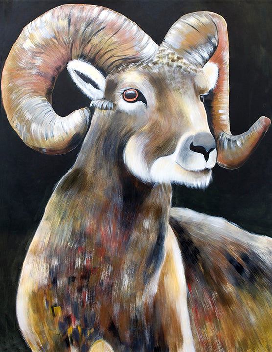 Big Horned Sheep, 2019