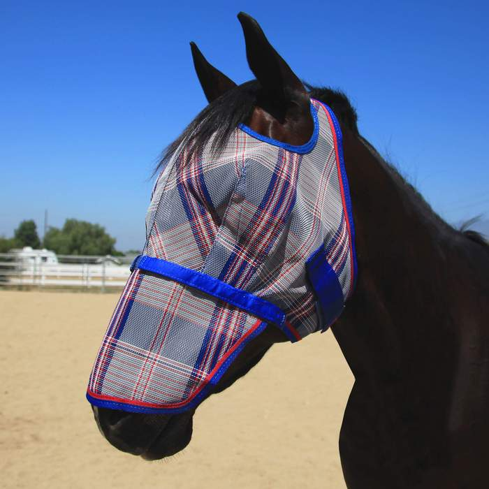 Kensignton Fly Mask with Web Trim and Removable Nose
