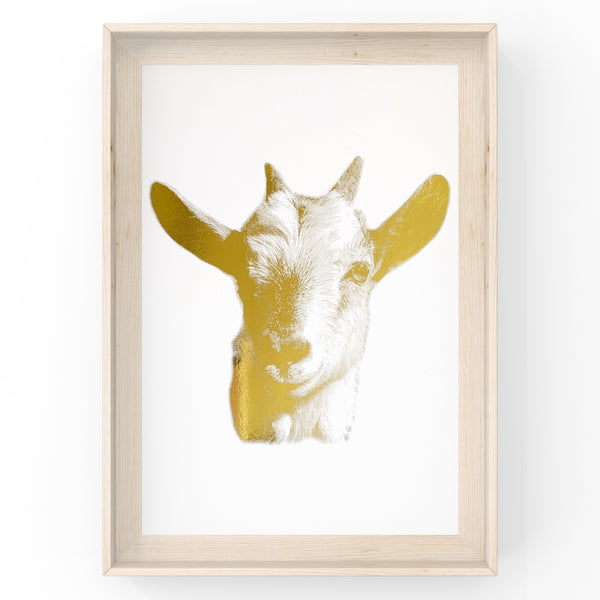 Goat Farm Animal Wall Art Foil Prints