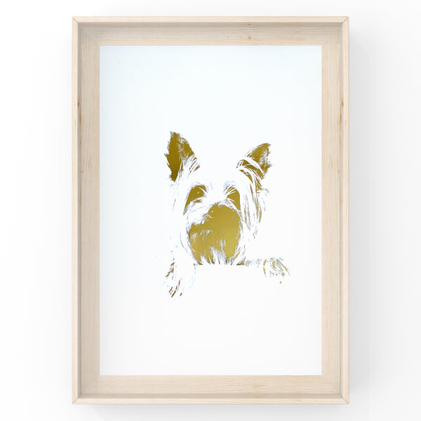 Silky Terrier Face - Dog - Foil Print