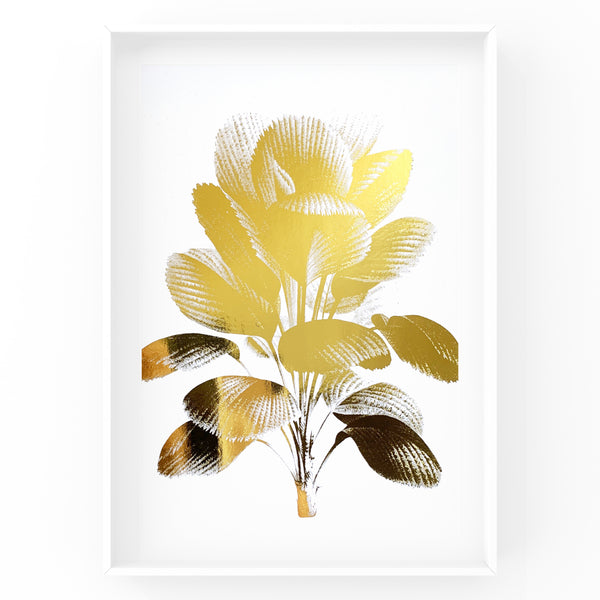 Ruffled Fan Palm Tree - Foil Print