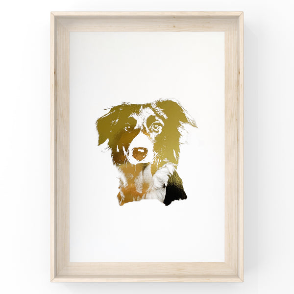 Border Collie Face - Dog - Foil Print