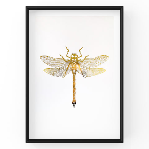 Dragonfly Wall Art Foil Prints