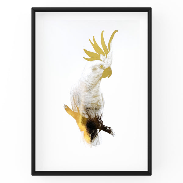 White Cockatoo Wall Art Foil Prints