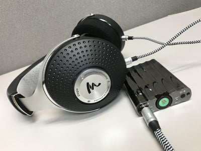 Focal Elegia Review