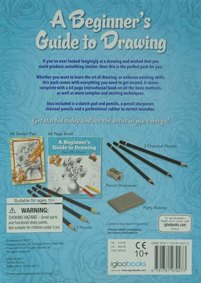 A Beginner's Guide to Drawing