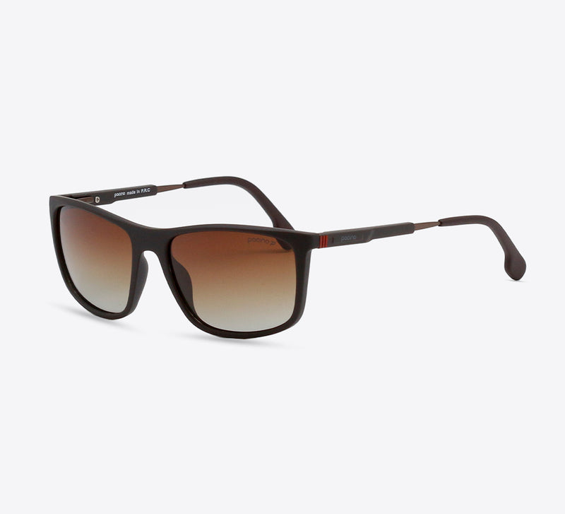 Pat Sunnies In Camel Tortoise - Men