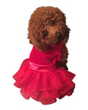 Red Velvet Fufu Tutu | Holiday Party Girl Dog Dress | Chloe Cole Pet