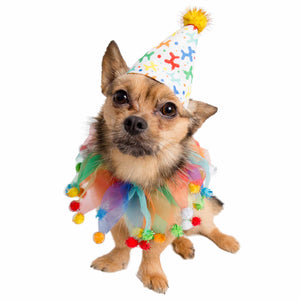 Celebration/Birthday Hat & Collar Set for Dogs