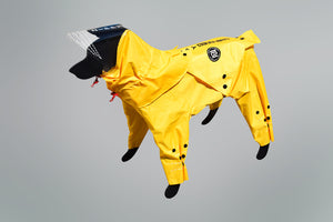 Rainy Dog Body Suit