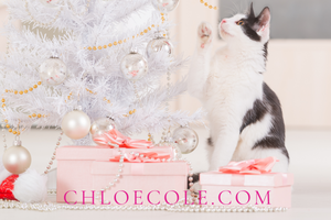 Gift Card - Pink Christmas Cat