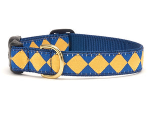 Blue Gold Dog Collar