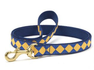 Blue Gold Dog Leash