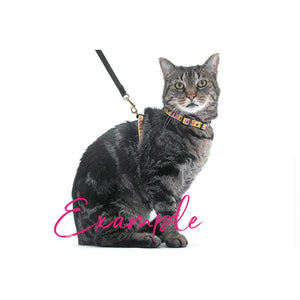 Boo Cat Leash and Harness Set