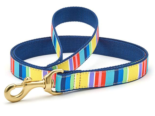 Colorful Stripe Dog Leash