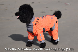 Zesty Dog Body Suit