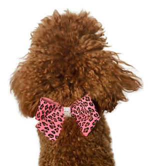 Pink Leopard Westminster Grand Champion Bow Slider