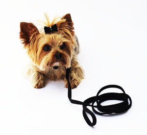 Black 4ft Ultra Suede Leash