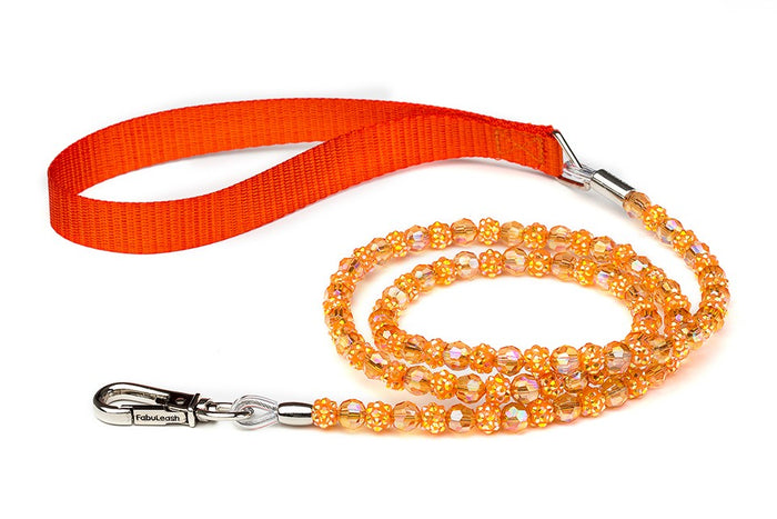 Orange Fireball Dog Leash