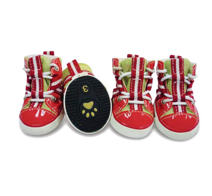 Sporty Dog Sneakers - Summer Red