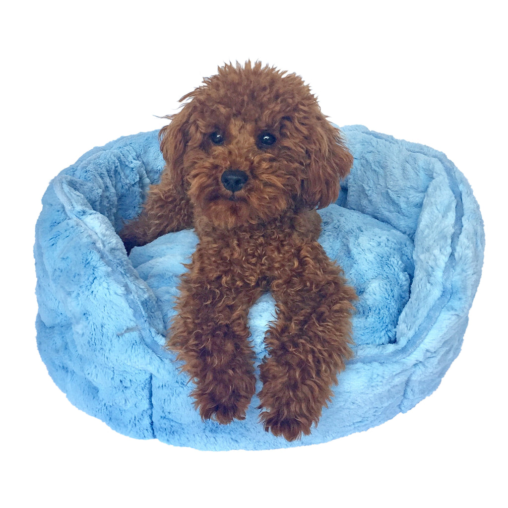 Light Blue Faux Fur Shell Bed