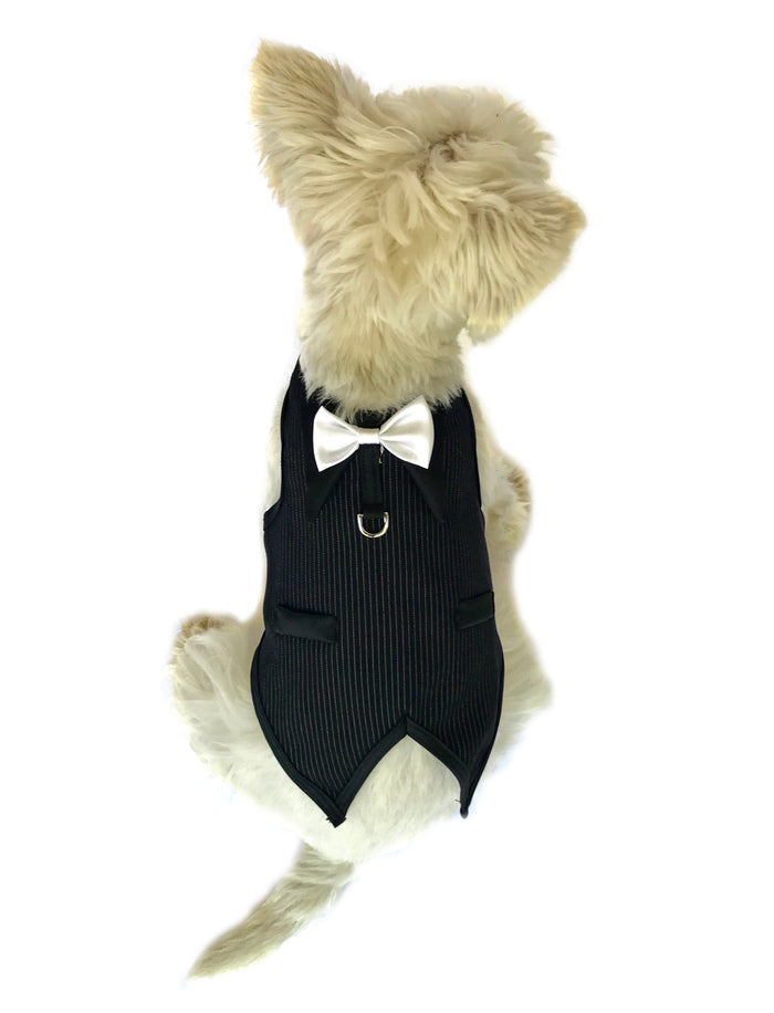 The Dog Father Pinstriped Tuxedo