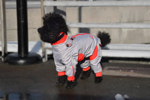 Zippy Full Body Suit for Dogs