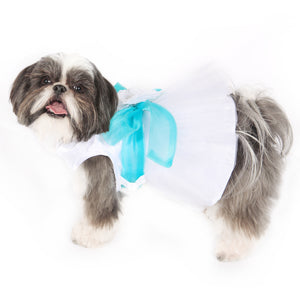 Madeleine Dog Dress With Aqua Sash