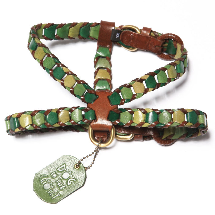 Shades Of Green Leather Dog Harness