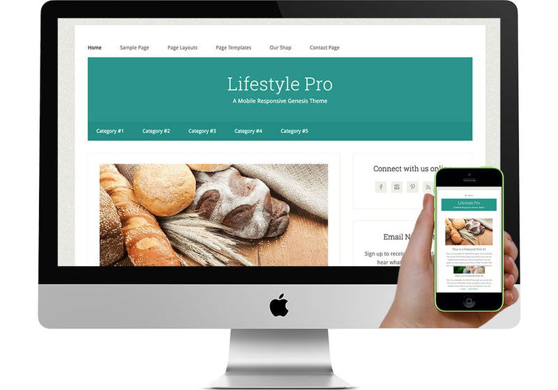 Lifestyle Pro WordPress Website