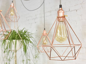 Bulbs & Accessories-3