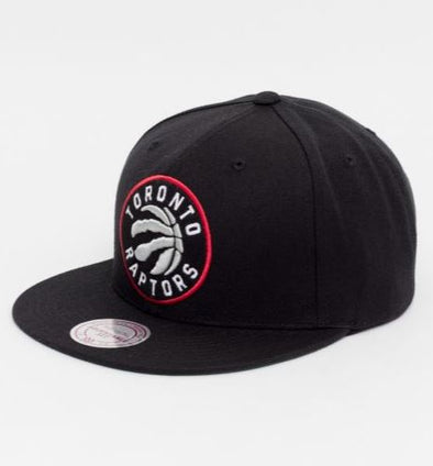 Toronto Raptors Vintage Juice J Snapback Hat- Black - Little Rookie Sport (4293669486653)