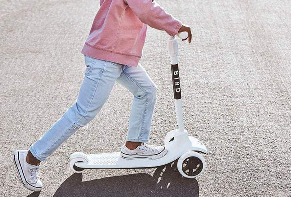 Birdie 3-Wheel Scooter- Dove White