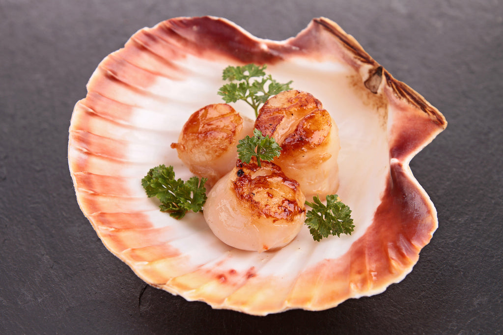 Alaska Weathervane Scallops: A Healthy Obsession