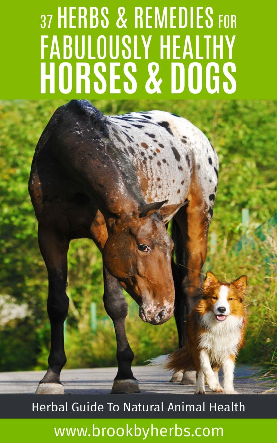 Herbal Guide - 37 Herbs & Remedies For Fabulously Healthy Animals""