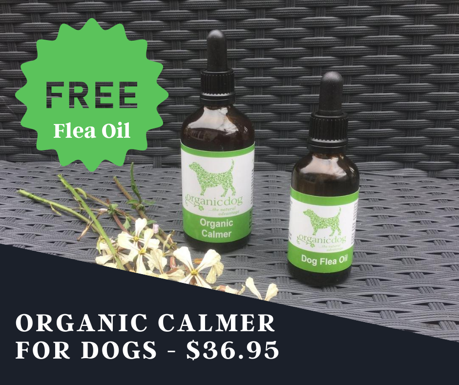 Organic Calmer 100 ml Special Offer - with FREE Flea Oil 50 ml valued at $15.95