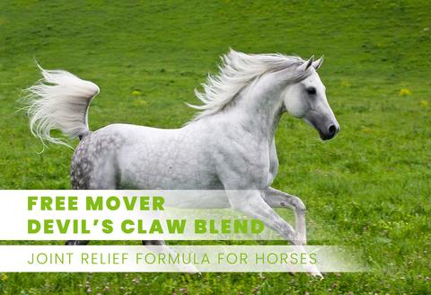 Free Mover (Devil's Claw Blend)