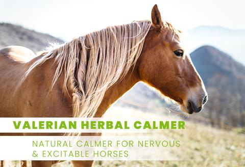 Valerian Herbal Calmer