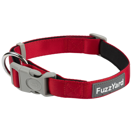 FuzzYard, Dog Collars & Harnesses, Rebel Collar (3 Sizes)