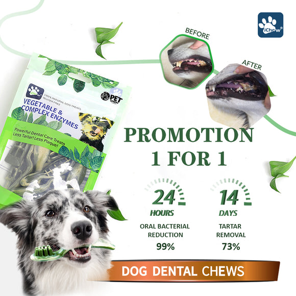 PetUnion iChew, Dog Hygiene, Oral & Dental Care, Vegetable & Complex Enzymes Dental Chews, Buy 1 Get 1 FREE