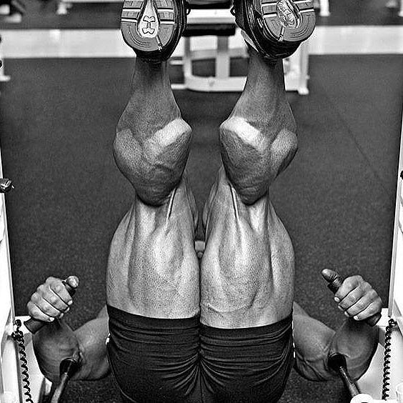 1,000 Reps for Legs!