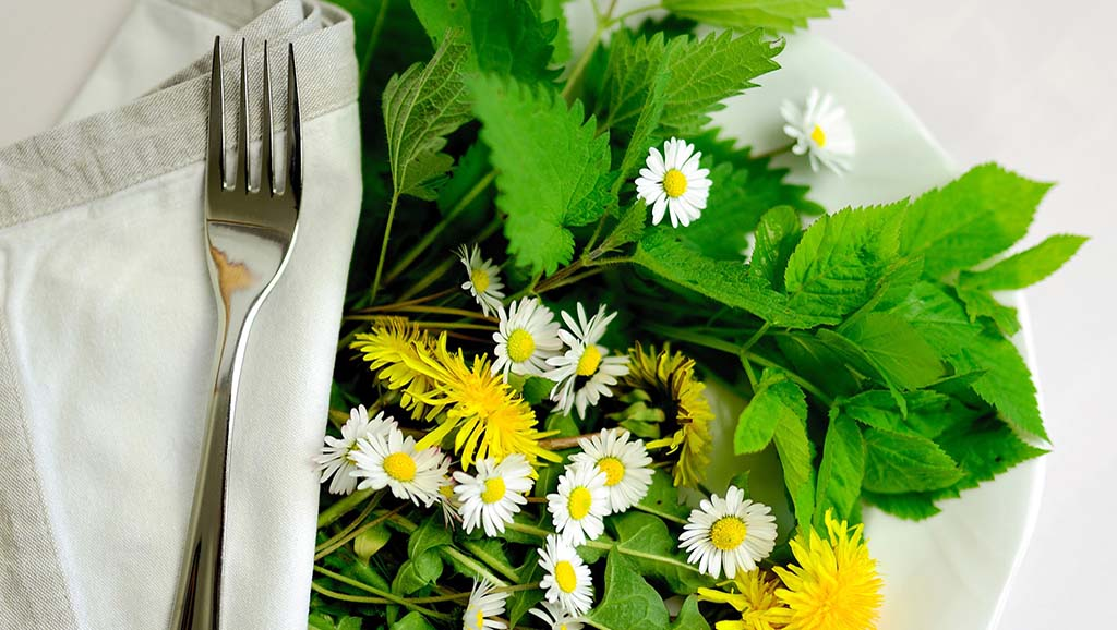 A plate full of fresh edible herbs and flowers