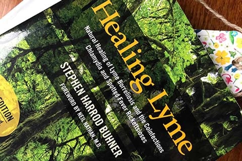 Healing Lyme book by Stephen Buhner