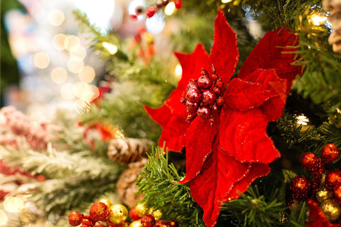 Christmas tree with red poinsettia decorations and baubles