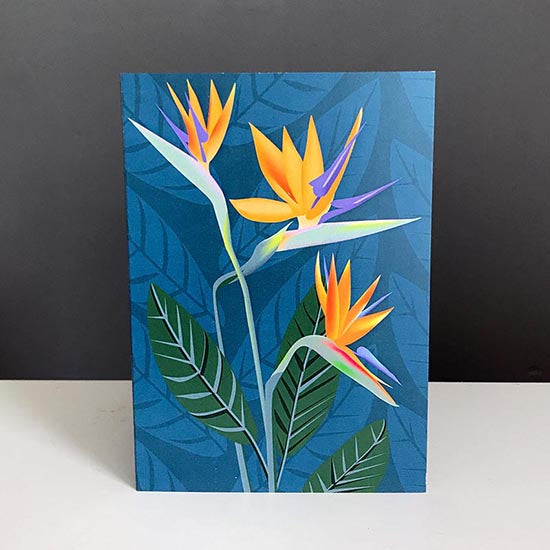 Bird of Paradise greetings card