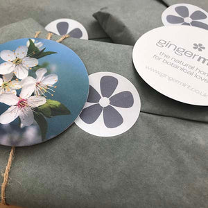Ginger Mint eco-friendly gift wrapping service