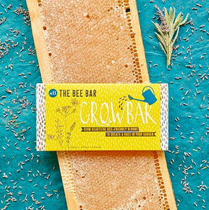 Bee bar growbar seeds with honey comb