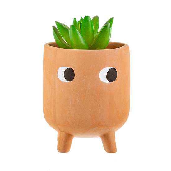 Terracotta planter with painted eyes and three legs with plant